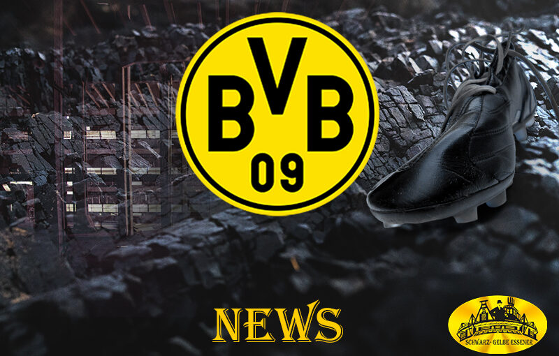 BVB News